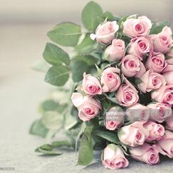 白い薔薇の花束